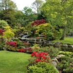 como-fazer-um-jardim-4