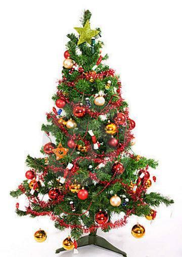 decorar uma arvore de natal : decorar uma arvore de natal:Dicas para Decorar Árvore de Natal – Dicas na Internet