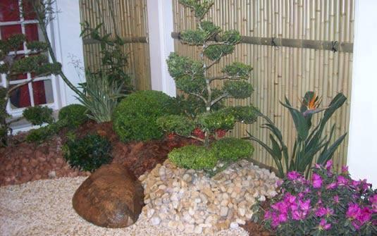 decorar um jardim:Essas são algumas dicas de como fazer um jardim de inverno e para