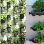Dicas para Fazer uma Horta Vertical