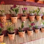 Dicas para Fazer um Jardim Vertical – Fotos