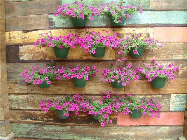 Como Fazer Um Jardim Flores Pictures to pin on Pinterest