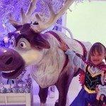 Decoração de Festa de Aniversário Infantil Tema Frozen