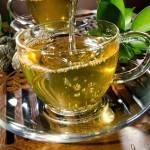 Chá de Amora – Benefícios e Receita