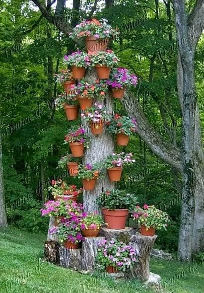 Portanto siga essas dicas e crie seu jardim gastando pouco, e para
