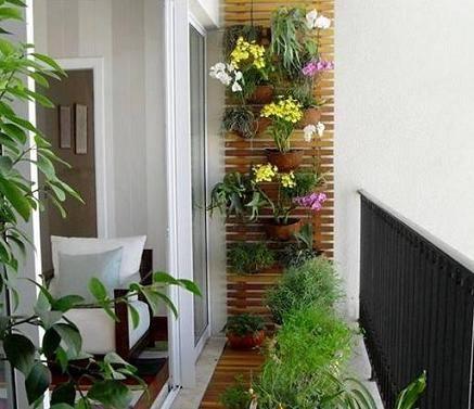 montar-jardim-na-varanda-9